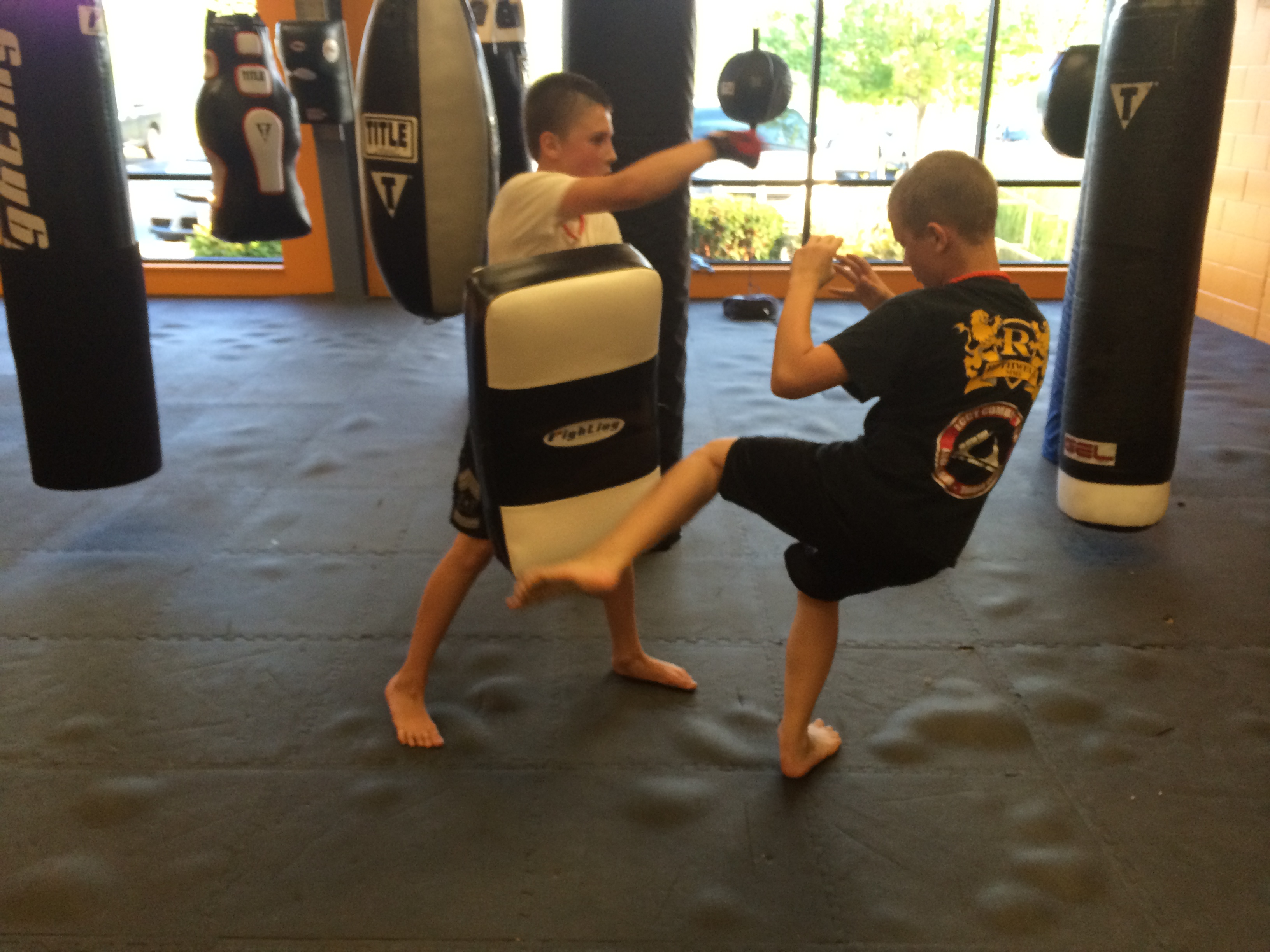 Kids Kickboxing, Kicks