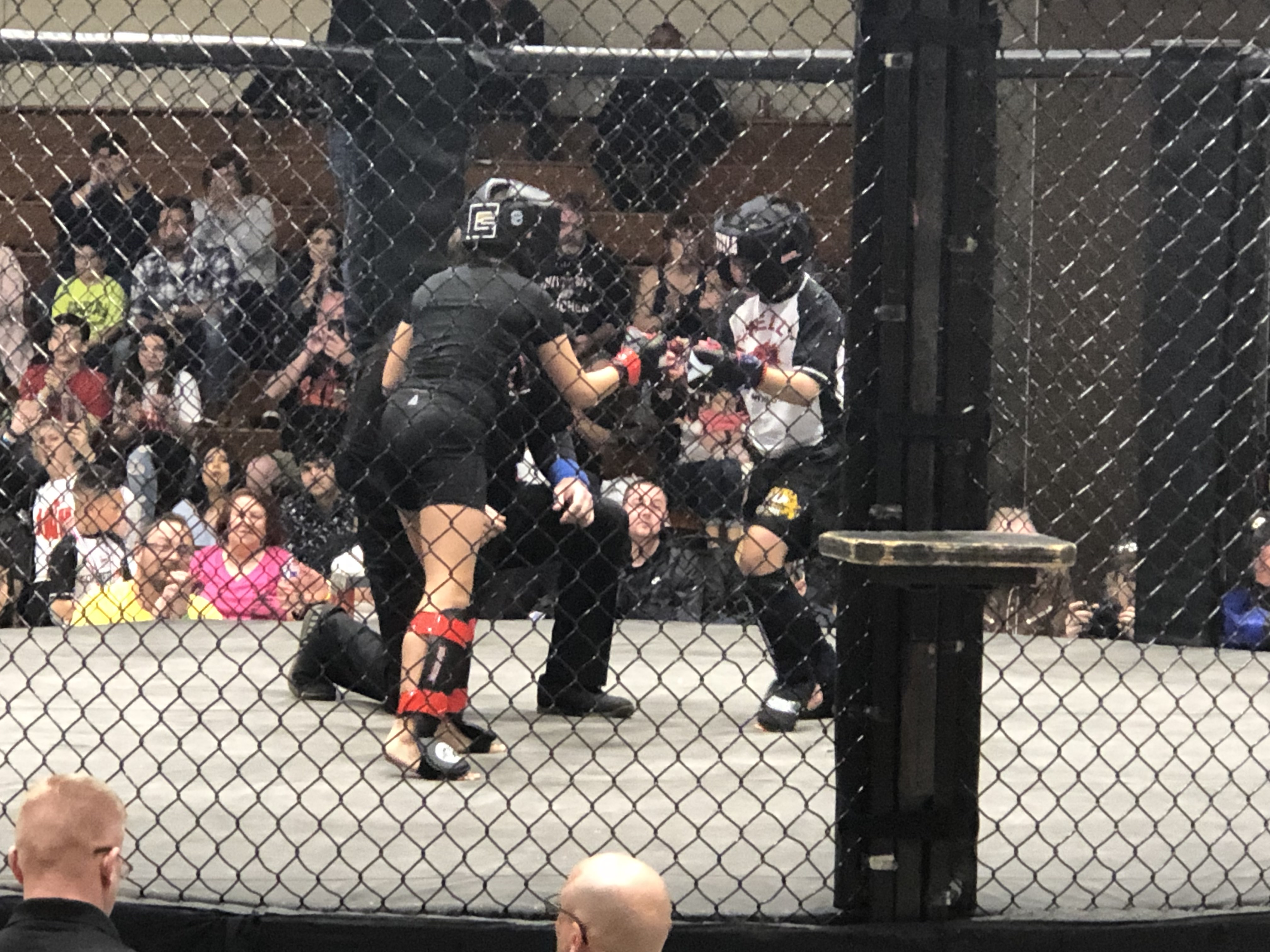 Youth MMA Tournament Success